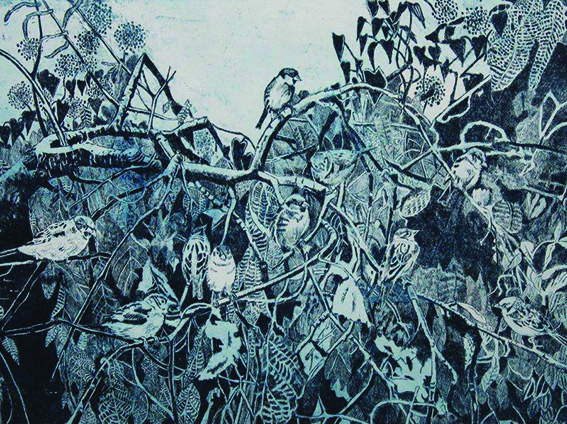 Janis Goodman - Ubiquity of Sparrows