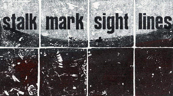stalk mark sight lines David Armes hiresjpg